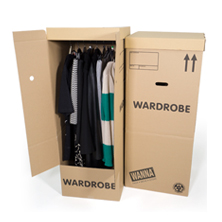 Eco Wardrobe Boxes x 2